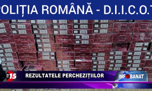 Rezultatele perchezițiilor