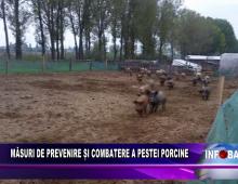 Măsuri de prevenire și combatere a pestei porcine
