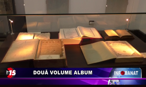 Două volume album