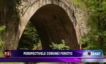 Perspectivele comunei Forotic