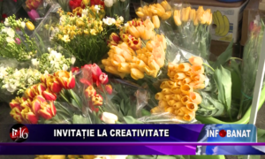Invitație la creativitate
