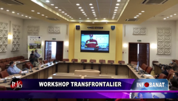 Workshop transfrontalier