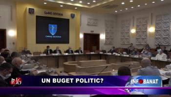 Un buget politic?