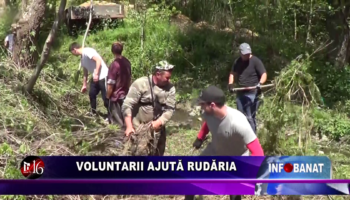 Voluntarii ajută Rudăria