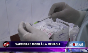 Vaccinare mobilă la Mehadia