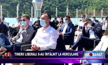 Tinerii liberali s-au întâlnit la Herculane