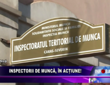 Inspectorii de muncă, în acțiune!