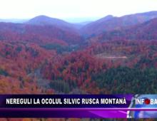 Nereguli la Ocolul Silvic Rusca Montană