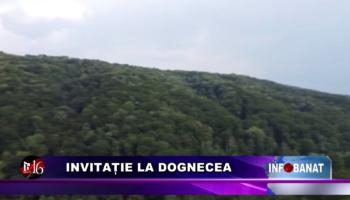 Invitație la Dognecea