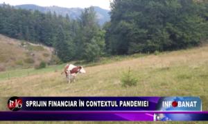 Sprijin financiar în contextul pandemiei