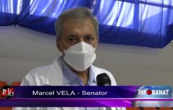 Senator voluntar